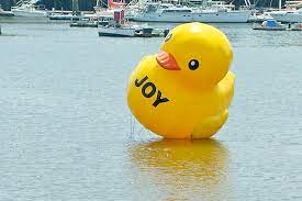 Big bird on water is mystery, but town calls it just ducky